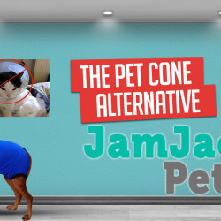 JamJacks Petcare Facebook Cover Art